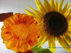 Ginger Lemon Sunflower Soap handcrafted by Nancy Denmark #soap