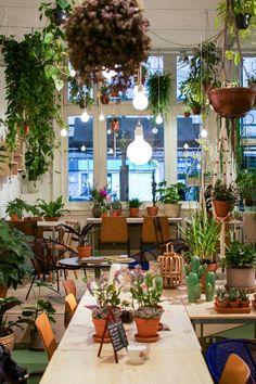 Wildernis, Amsterdam, Urban Jungle Bloggers, coffee + plants