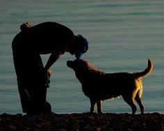 Las Mascotas. Mejores Amigos del Hombre http://www.mascotadomestica.com/articulos-sobre-mascotas/las-mascotas-losmejores-amigos-del-hombre.html