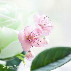 """Купить Серьги гвоздики """"Цветы персика"""" с жемчугом - Холодный фарфор, цветы ручной работы"""