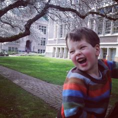 """My four-year-old loved the trees!"" UW Cherry Blossoms 