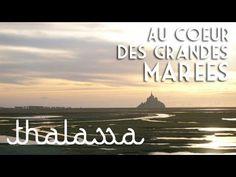 Au cœur des grandes marées - Thalassa (émission intégrale)