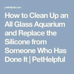 How to Clean Up an All Glass Aquarium and Replace the Silicone from Someone Who Has Done It | PetHelpful