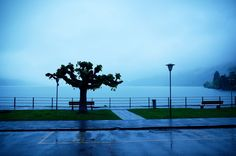 Standing in the rain - Rainy day at Lake Brienz in the district of Interlaken…