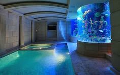 NYC Spa Aquarium -