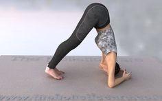 Makarasana Dolphin Yoga Pose मकरासन