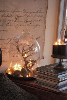 twigs - Spanish moss - rocks - lights - bell jar