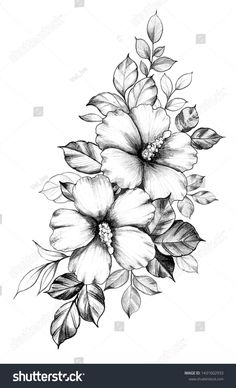 How to Hibiscus Flower Drawing How to Hibiscus Flower Drawing. How to Hibiscus Flower Drawing. Hibiscus Flower Drawing at Getdrawings in hibiscus flower drawing Hand Drawn Hibiscus Flowers Leaves Isolated Stock Hawaiian Flower Tattoos, Hibiscus Flower Tattoos, Hawaiian Flowers, Hibiscus Flowers, Lilies Flowers, Flowers Garden, Gypsy Tattoo Design, Flower Tattoo Designs, Flower Tattoo Drawings