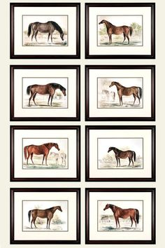 Antique and Vintage Prints - For Sale at Equestrian Bedroom, Equestrian Decor, Equestrian Style, Design My Room, Rental Home Decor, Vintage Paintings, Office Prints, Vintage Horse, Horse Print