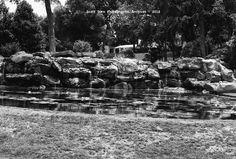 Waterfall  Dallas Arboretum June 15, 2012