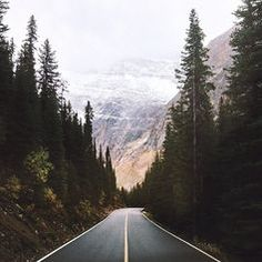 Imagine what the road leads to? The mountains in the background. The trees how they embrace the road and it leads the beauty of nature. This picture brings inspiration to me because it feels like nature is telling me to follow the road to nature and change.