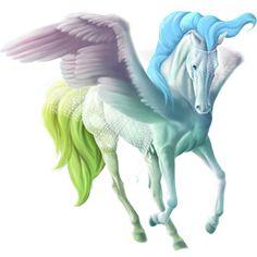 Dancing In A Cloud, Pegasus KWPN Roan #45407695 - Howrse