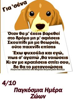 Scooby Doo, Funny, Fictional Characters, Funny Parenting, Fantasy Characters, Hilarious, Fun, Humor