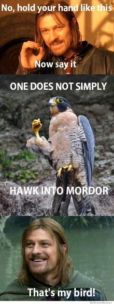 one does not simply hawk into mordor