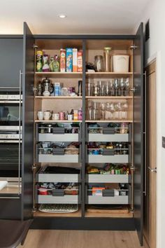 Modern Kitchen Interior Remodeling 49 Stunning Kitchen Organization Cabinets Decorations and Design Ideas Kitchen Pantry Design, Kitchen Pantry Cabinets, Small Kitchen Organization, Small Kitchen Storage, Modern Kitchen Design, Home Decor Kitchen, Diy Kitchen, Kitchen Interior, Organization Ideas