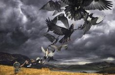 David Gilmour - Rattle That Lock - September 2015 - For a full Review: http://www.platendraaier.nl/albumrecensies/david-gilmour-rattle-that-lock/