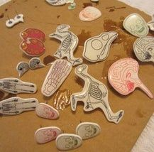 Jewellery With Shrinky Dinks and Doming Resin: 6 Steps Shrink Film, Diy Jewelry, Jewellery, Shrinky Dinks, Shrink Plastic, Dream Catcher, Resin, Tutorials, Dreams