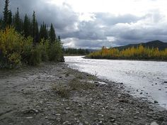 Stampede Trail, Alaska. I'll hike this one day too. Bucket list for sure