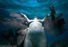 Dreamlike Underwater Sculptures by Jason Taylor