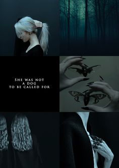 """aly-naith: """""""" make me choose: thelionneverfearsthejackal asked - Manon or Lysandra """" """"She was not a dog to be called for, and neither were her witches. Badass Aesthetic, Book Aesthetic, Aesthetic Collage, Character Aesthetic, Aesthetic Photo, Aesthetic Pictures, Throne Of Glass Books, Throne Of Glass Series, Slytherin Pride"""
