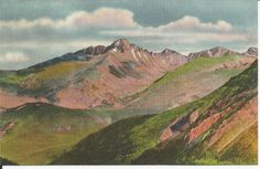 VINTAGE LINEN COLORADO POSTCARD : LONG PEAK OVER THE DEPTHS OF FOREST CANON