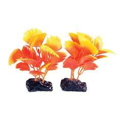 "Underwater Treasures Orange Cluster (2 Pod) - 3"""