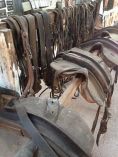 National Trust Museum Waikerie, SA, Australia - Leather straps, halters, saddles and yolks for farming.