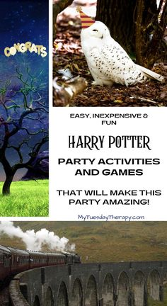 Harry Potter party games and activities. These Harry Potter party ideas on budget will make any birthday or Halloween party super fun! Harry Potter Party Games, Harry Potter Activities, Harry Potter Birthday, Activities For Teens, Games For Teens, Party Activities, Easy Party Games, Birthday Party Games For Kids, Haloween Party