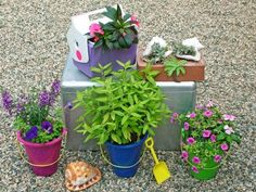 Bring a bit of the seaside to your garden with a collection of beach-themed planters, such as inexpensive sand buckets or other plastic beach toys. Plastic and insulated metal coolers make great containers too. You can even fill large shells with sandy growing mix and tuck small succulents into them.