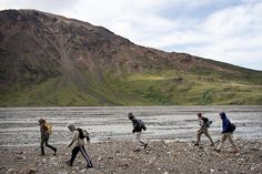 Kid's Camps in Denali National Park & Preserve are a great chance for youth to explore the wilderness of #Alaska!