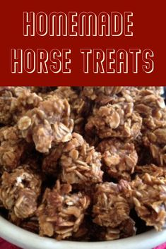 It can be very frustrating trying to find horse treats that are safe and healthy for our equine friends. In this post, Harper Slusher shares her recipe for natural horse treats. Pet Treats, Healthy Dog Treats, Homemade Horse Treats, Horse Cookies, Horses And Dogs, Treats For Horses, My Horse, Horse Tips, Horse Riding
