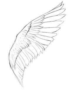 How To Draw Angel Wings Drawing Template Outline Drawing Lessons, Drawing Techniques, Drawing Tips, Drawing Sketches, Art Lessons, Painting & Drawing, Sketching, Drawing Skills, Animal Drawings