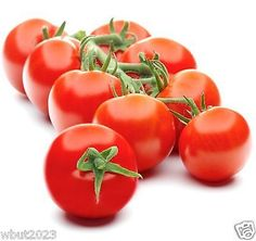 PLEASE USE DROPDOWN BOX TO ORDER !  Campari Tomatoes Seeds  The most disease-resistant tomato we've ever seen.  A true breakthrough when it comes to disease-resistance. This scrumptious campari tomato withstands the big three threats besetting ...