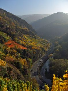 Der Rotweinwanderweg im Herbst Travel Around The World, Around The Worlds, Germany Landscape, Germany Poland, Hiking Routes, Wine Tourism, Nature Adventure, Great Pictures, Germany Travel