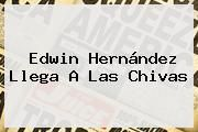 http://tecnoautos.com/wp-content/uploads/imagenes/tendencias/thumbs/edwin-hernandez-llega-a-las-chivas.jpg Edwin Hernandez. Edwin Hernández llega a las Chivas, Enlaces, Imágenes, Videos y Tweets - http://tecnoautos.com/actualidad/edwin-hernandez-edwin-hernandez-llega-a-las-chivas/