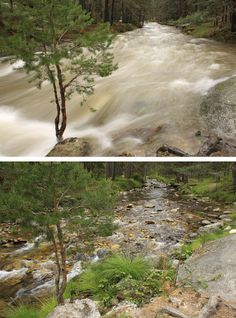 Aniversario de la Sierra del Guadarrama Vertiente segoviana. Arriba, río Eresma crecido por el deshielo en marzo de 2014. Abajo, la misma zona fotografiada en mayo de 2014.