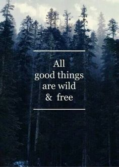 Wild and Free..for sure!!