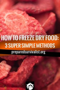 How To Freeze Dry Food - freeze drying food with dry ice is one method to preserve food for longer times. This is a moderate way to freeze dry your food.