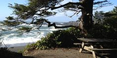 Oceanside campsites, Woodland camping, Serviced RV and unsupervised RV sites in Ucluelet -- WYA Point Resort. Half Moon Bay, Rv Camping, Campsite, Camping Ideas, Glamping, Rv Sites, Rock Pools, Vancouver Island, British Columbia