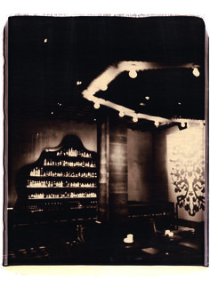Julian Schnabel » Gramercy Park Hotel Photography