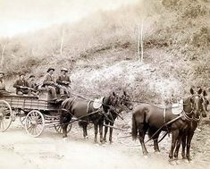 Here we present a stunning image of Wells Fargo Express Company. Deadwood Treasure Wagon and Guards with $250,000 gold bullion from the Great Homestake Mine, Deadwood, S.D., 1890. It was taken in 1890 by Grabill, John C. H., photographer.    The image shows Five men, holding rifles, in a horse-drawn, uncovered wagon on a country road.