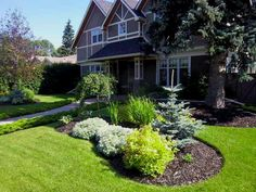 A simple yet beautiful front yard landscape design with low maintenance mulched garden beds. The area under the large tree is also mulched as a practical solution over struggling to grow a lawn.