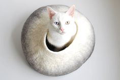 Reduced Price- Felted Cat Bed - Felted Cat Cave - Felted vessel - Wool cat bed - 8 on Etsy, $60.00