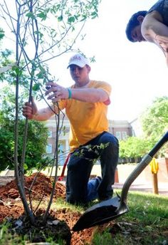 UGA Lions Club already making a difference