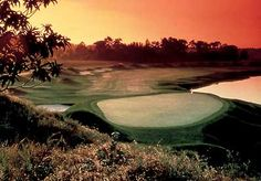 Grand Cypress New Course- Orlando Over 150 pot bunkers and i wasn't in a single one!