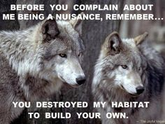 That goes for snakes, bats, ground hogs and just about every other animal is existence.