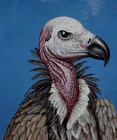 oilpainting on wood: bird