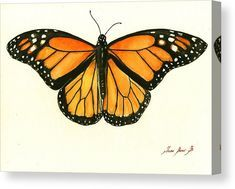 Monarch butterfly Canvas Print by Juan Bosco. All canvas prints are professionally printed, assembled, and shipped within 3 - 4 business days and delivered ready-to-hang on your wall. Choose from multiple print sizes, border colors, and canvas materials. Butterfly Painting Easy, Butterfly Artwork, Butterfly Drawing, Butterfly Pictures, Butterfly Nail, Butterfly Wall Art, Monarch Butterfly, Blue Butterfly, Garden Tiles