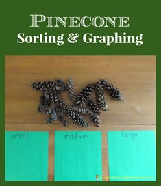 Day 13 of our Christmas Science Advent Calendar belongs to Pinecone Sorting and Graphing. Graphing Activities, Math Activities For Kids, Fun Math, Christmas Math, Preschool Christmas, Christmas Tables, Nordic Christmas, Modern Christmas, Xmas