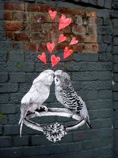Street Art, budgies in love. Photo by caravanstyle Murals Street Art, Graffiti Murals, Street Art Graffiti, Banksy, Art Optical, Optical Illusions, Street Art Love, Wonder Art, Outdoor Art